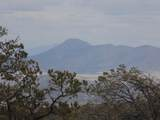 493 High Sierra Road - Photo 10