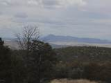 493 High Sierra Road - Photo 14
