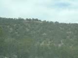 493 High Sierra Road - Photo 15