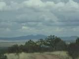 493 High Sierra Road - Photo 19