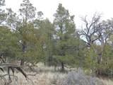 493 High Sierra Road - Photo 2