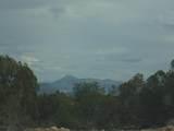 493 High Sierra Road - Photo 21