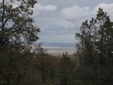 493 High Sierra Road - Photo 5