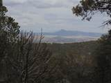 493 High Sierra Road - Photo 6