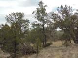 493 High Sierra Road - Photo 7