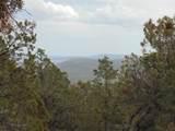 493 High Sierra Road - Photo 8