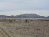 1098 Sierra Verde Ranch - Photo 4