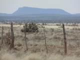 1098 Sierra Verde Ranch - Photo 6