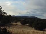 101 Sierra Verde Ranch - Photo 24