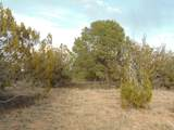 101 Sierra Verde Ranch - Photo 5