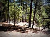 1500 Forest Service Rd 81 9.041 - Photo 19