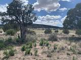 39110 Old Highway 66 - Photo 41