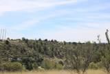 1755 Buena Vista Trail - Photo 8
