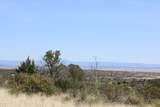 1755 Buena Vista Trail - Photo 9