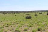 Lot 73 Antelope Valley Ranches - Photo 5