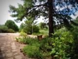 6400 Mayer Bolada Road - Photo 29