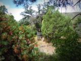 6400 Mayer Bolada Road - Photo 52