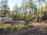 22550 Black Bear Road - Photo 1