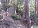 22550 Black Bear Road - Photo 11