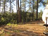 22550 Black Bear Road - Photo 12