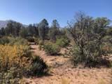 4425 Clear Fork Circle - Photo 17