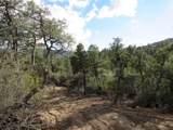 22890 Gladiator Mine Road - Photo 4