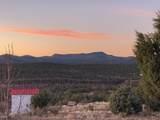 19364 Mesa View Trail - Photo 42