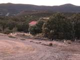 19364 Mesa View Trail - Photo 46