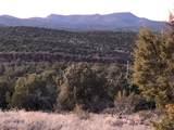 19364 Mesa View Trail - Photo 56