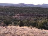 19364 Mesa View Trail - Photo 57