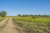 2590 Tree Farm Lane - Photo 13