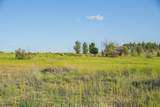 2590 Tree Farm Lane - Photo 8