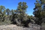 9845 Cougar Canyon Road - Photo 3