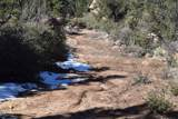 9845 Cougar Canyon Road - Photo 5