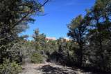 9845 Cougar Canyon Road - Photo 8
