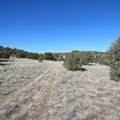 0 Upper Verde Trail - Photo 13