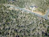 13750 Standing Bear Trail - Photo 10