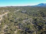13750 Standing Bear Trail - Photo 2
