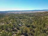 13750 Standing Bear Trail - Photo 5