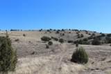 0 Crow Hop Trail - Photo 1