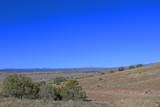 0 Crow Hop Trail - Photo 14