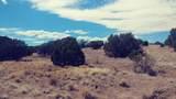 2800 Eagle Ridge Drive - Photo 12