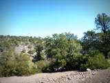 12885 Spiral Dancer Trail - Photo 15