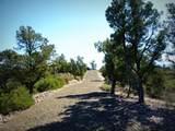 12885 Spiral Dancer Trail - Photo 18