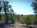 12885 Spiral Dancer Trail - Photo 21