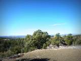 12885 Spiral Dancer Trail - Photo 6