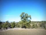 12885 Spiral Dancer Trail - Photo 8