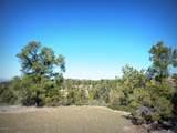 12885 Spiral Dancer Trail - Photo 9
