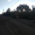 1040 Rose Quartz Drive - Photo 3
