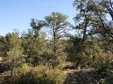 11820 Lost Man Canyon Way - Photo 13